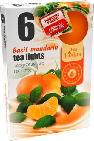 Tea lights (6psc.) - BASIL, MANDARIN